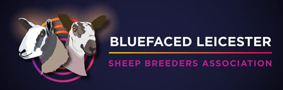 Bluefaced Leicesters Logo