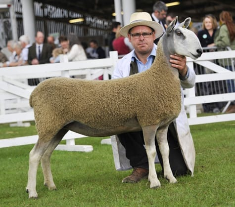 Great Yorkshire Show Show Results