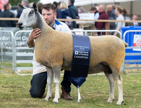 Royal Highland Show – Traditional Type Show Results