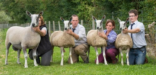 Wales & South West Progeny Show Show Results