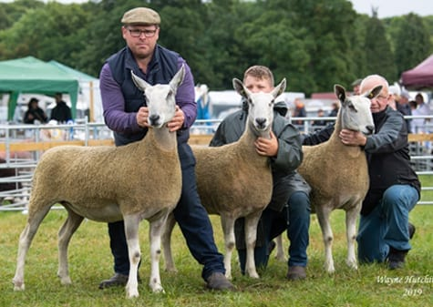 Penrith Progeny Show Traditional Type Show Results