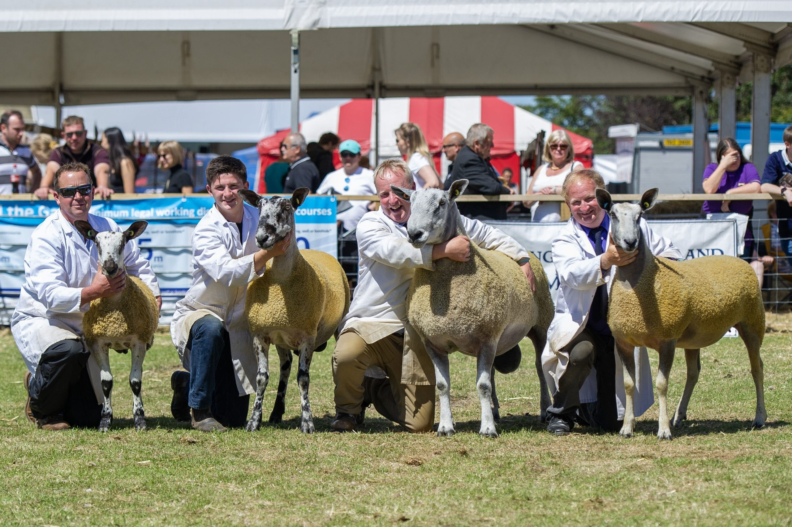 Royal Highland Show Image