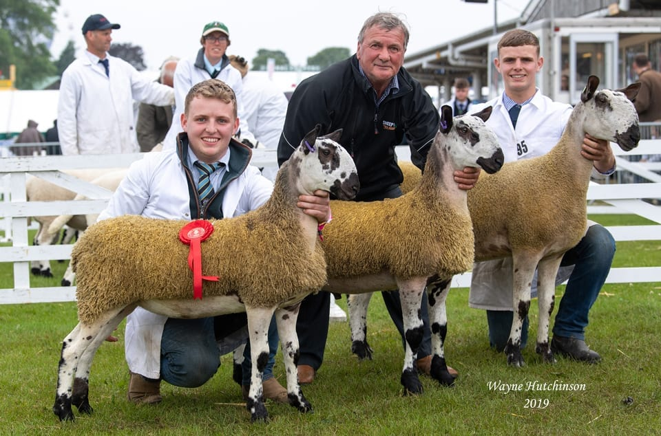 Great Yorkshire Show Image