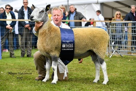 Royal Highland Show – Traditional Show Results