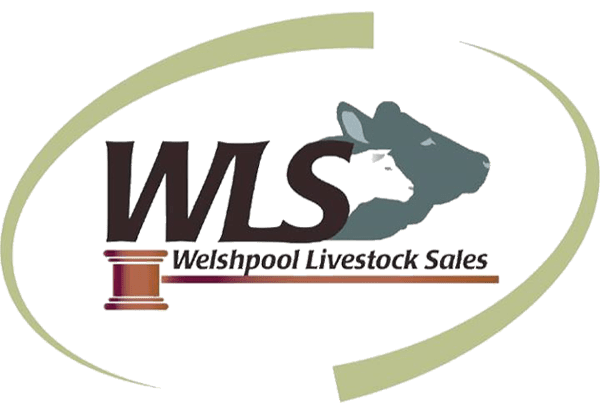 Welshpool Livestock Sales