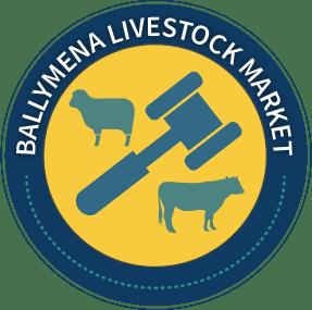 Ballymena Sale  Icon