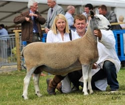 Royal Highland Show Show Results