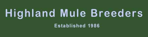 Highland Mules