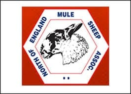 North Of England Mule Sheep Association