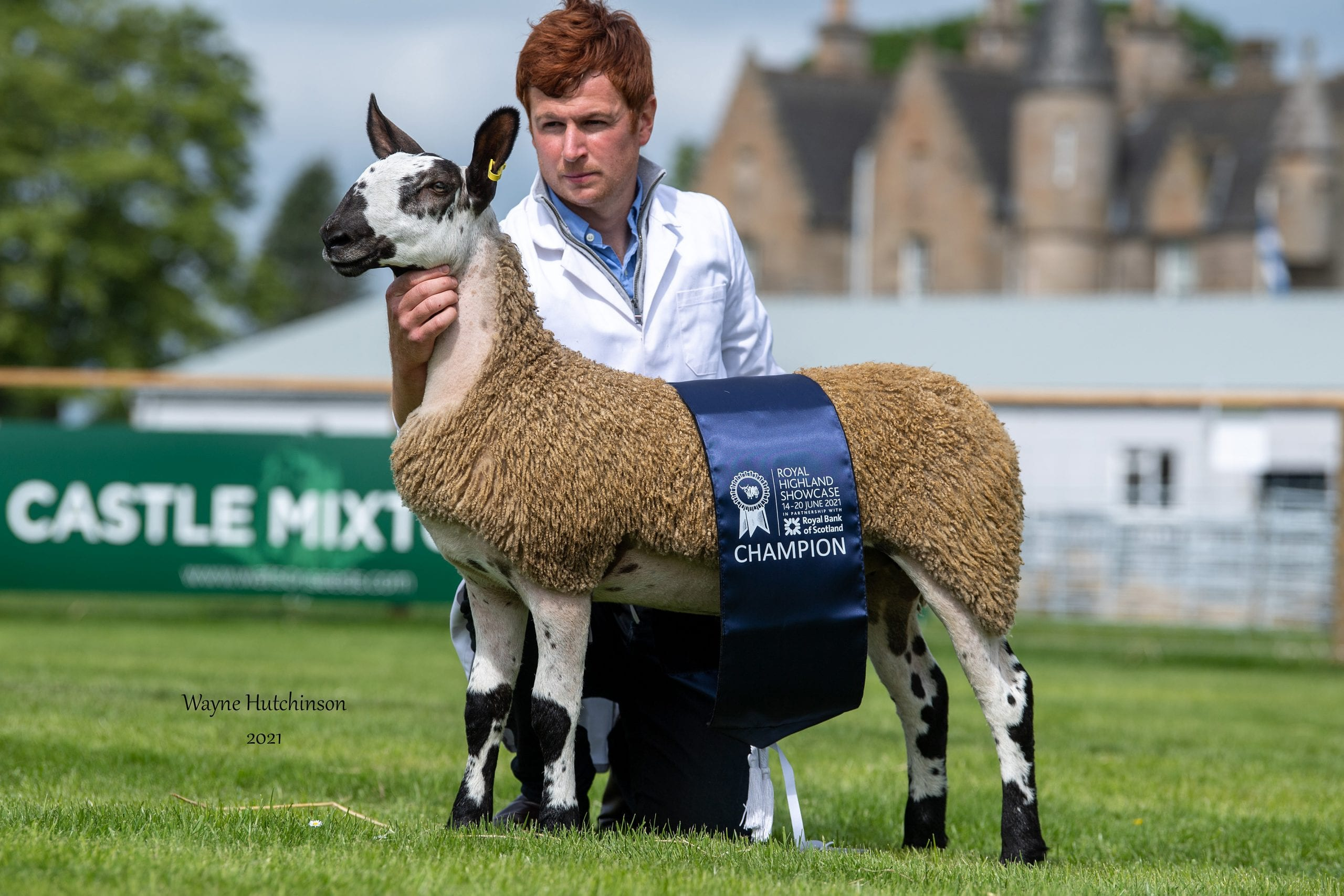 Royal Highland Showcase – Crossing Type Show Results